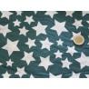tissus étoiles vert blanc