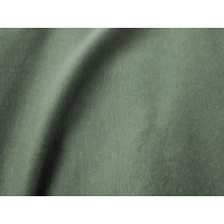 Jersey coton vert sauge